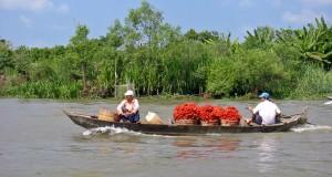 Discover-Mekong-delta-1.jpg_0