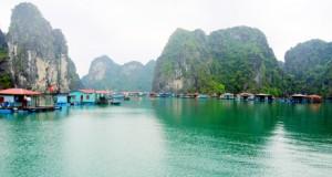 vung-vieng-fish-halong