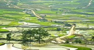 Mu Cang Chai Falling Water Season