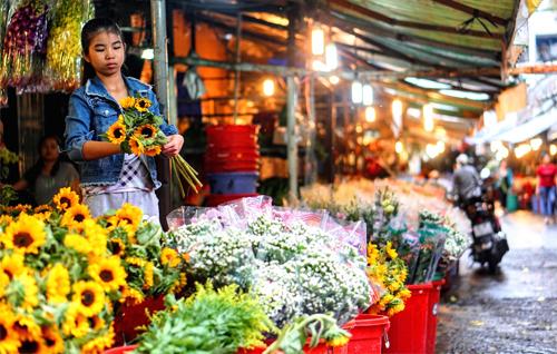 Ho Thi Ky Flower Market – The Largest Wholesale Flower Market in Saigon