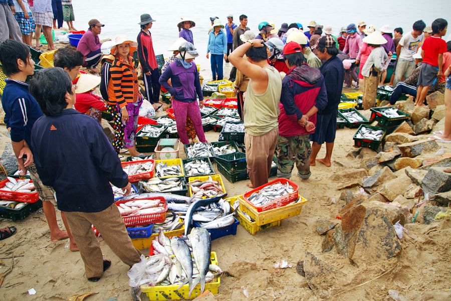 Seafood Market at Ke Ga Cape, Phan Thiet, Vietnam