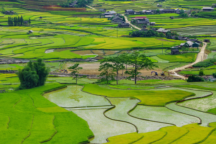 Khau Pha Pass is also a must-stop in the photo tour to the North of Vietnam
