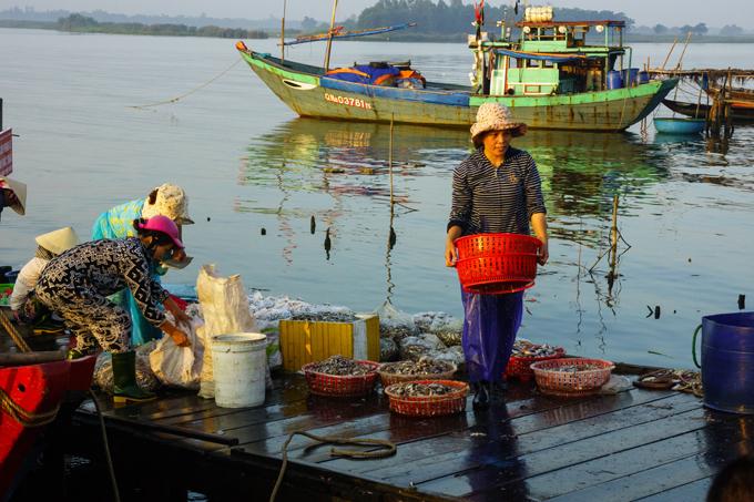 Thanh Ha Fish Market in Hoi An – Vietnam