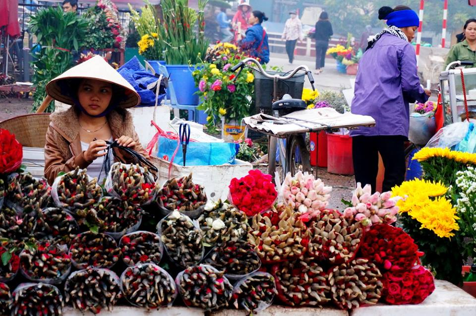 Quang Ba Hanoi Flower Market