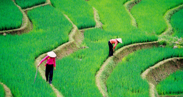 Sapa in Vietnam – The Upcountry Destination for Photography Adventure